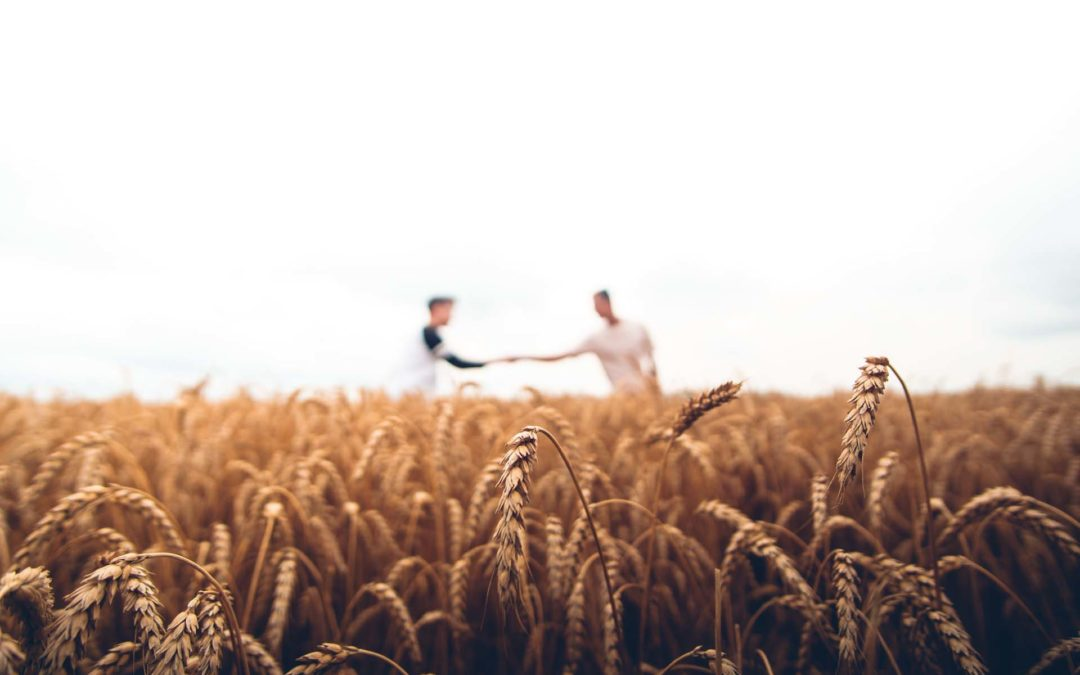 Security Technology – The Next Big Target for Cyberattack: Agriculture and the Supply Chain